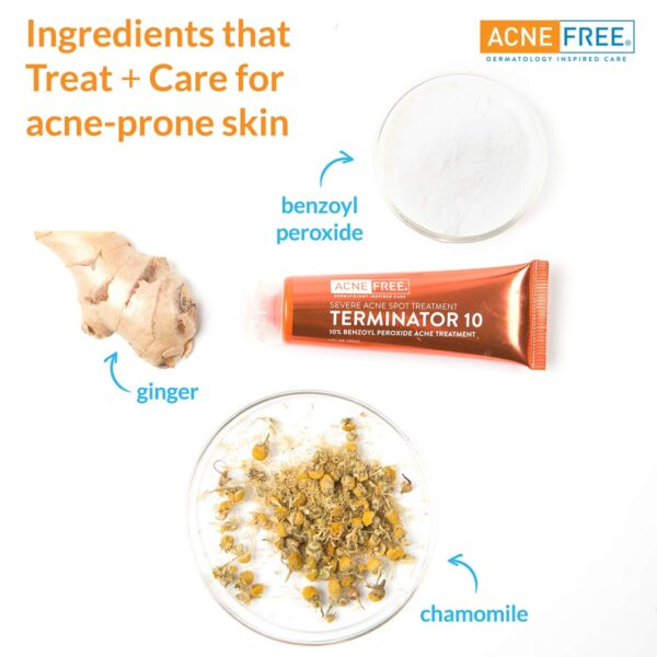 Acnefree Maximum Strength Terminator 10 acne spot treatment